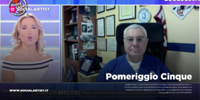 Pomeriggio Cinque, il Presidente dell'Associazione Nazionale dei Medici Veterinari Italiani chirisce quanto dichiarato dal veterinario Enrico Zibellini